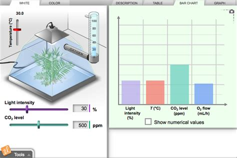 design lab on photosynthesis gizmo of the week photosynthesis lab explorelearning news