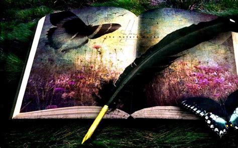imagenes de libros wallpaper butterflys feather book wallpapers butterflys feather