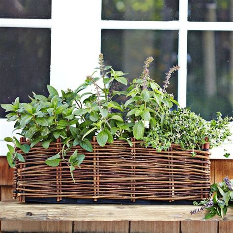 window planter herb garden in the garden pinterest