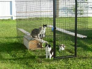 How To Keep Cats Out Of Your Backyard by Outside Cat Enclosures Designs For Pinterest