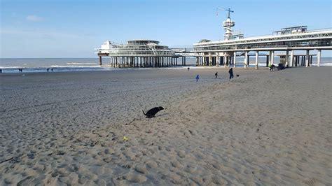 pier engels den haag fm 187 gemeente overstag scheveningen strand heet