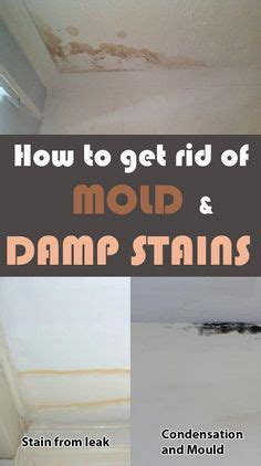 how to get rid of mold around the bathtub how to get rid how to get and at home on pinterest