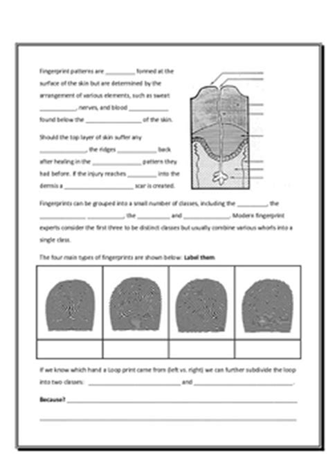 Forensic Handwriting Analysis Worksheet by Forensic Science Forensic Science Handwriting Analysis