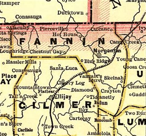 Fannin County Ga Records Militia Golden Family History