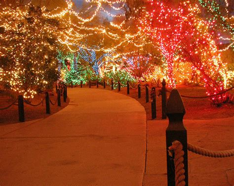 christmas christmas lights lights path walkway image