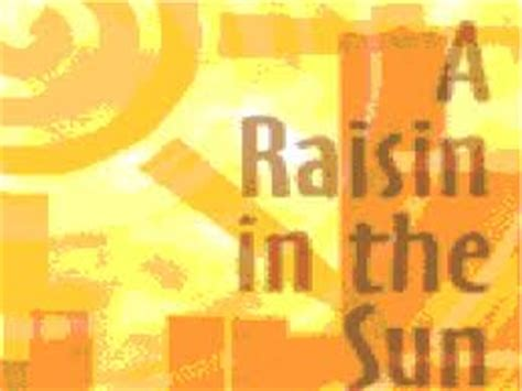 theme of identity in a raisin in the sun research papers hansberry s novel raisin in the sun