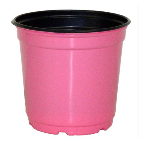 Plastic Flower Planters by Plastic Planter 5 Quot Taller Gloss Pink