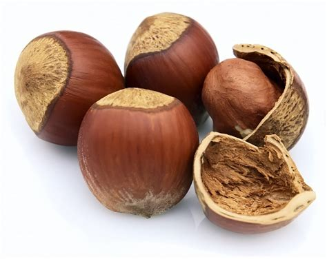 protein nuts soaked nuts better protein foods than whey