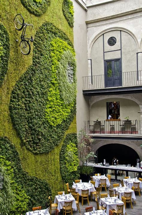 moss walls  interior design trend  turns  home