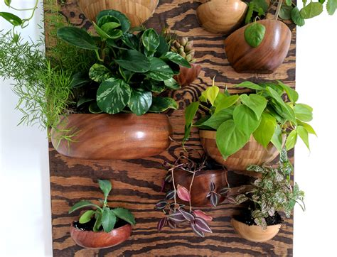 living wall vertical planter from wooden bowls reality