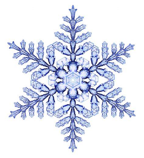 snowflake clipart i fiocchi di neve amano la fisica e la geometria focus it
