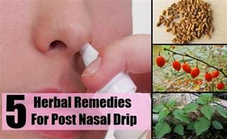 home remedy post nasal drip effective herbal remedies for post nasal drip problems