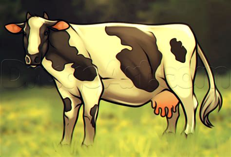 how to a cow how to draw a cow step by step farm animals animals free drawing tutorial