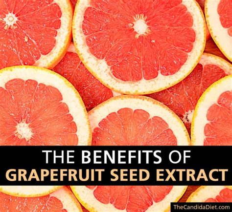 Grape Seed Extract Detox Symptoms by The Benefits Of Grapefruit Seed Extract Gse 187 The
