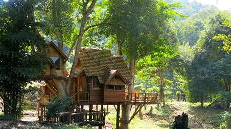 treehouse living treehouse living 3 days cottage treehouse go beyond asia