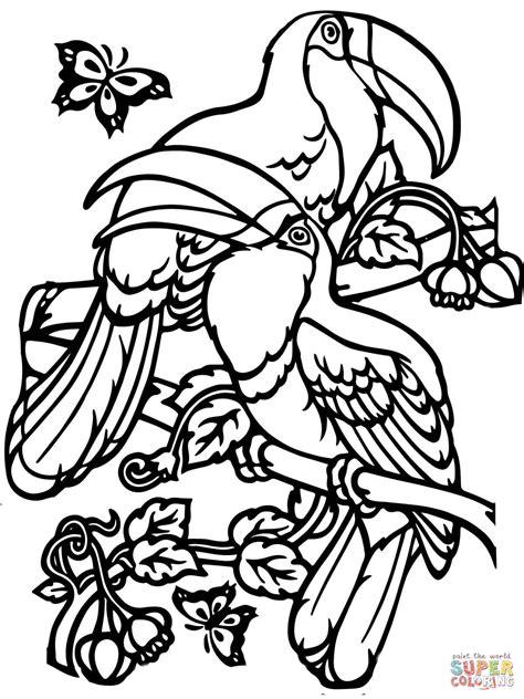 coloriage deux toucans coloriages 224 imprimer gratuits