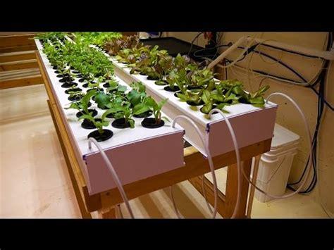 part  propagation table basement hydroponic led
