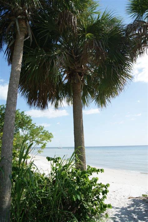 Wedding Planner Fort Myers by Fort Myers Tropical Wedding Planner