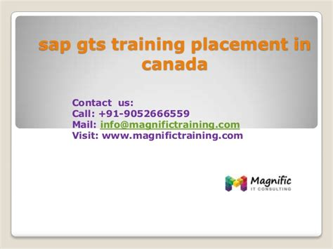 sap gts tutorial pdf sap gts training placement in canada