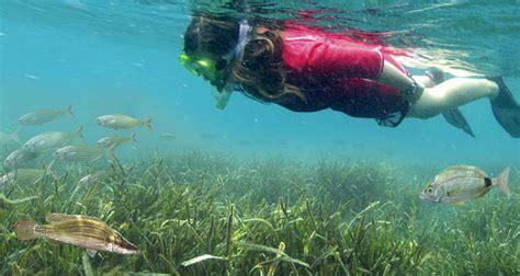 Facebook Offices snorkeling in menorca discovering menorca