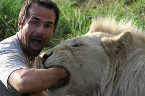 film lion man this man attempts to hug a wild lion what happened next