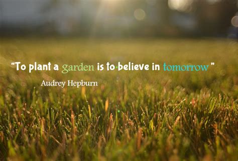 oberon s words of wisdom week 1 oberon s garden