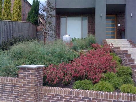 backyard landscaping melbourne contemporary native australian garden contemporary
