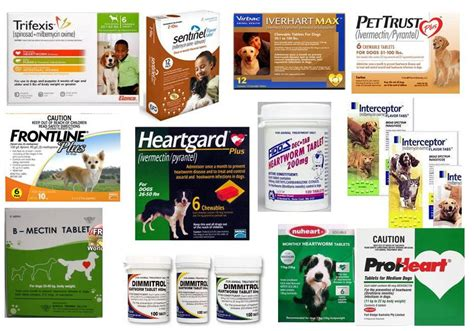 heartworm pills for dogs dangers of and cat flea tick heartworm parasite preventatives ottawa