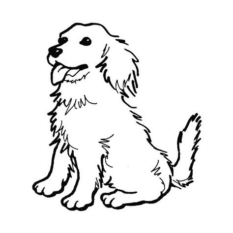 imagenes para dibujar un perro dibujos de perros para pintar dibujos de perros para colorear