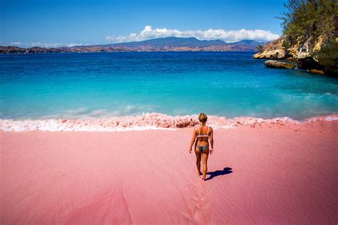 travel indonesias extremely rare pink beach
