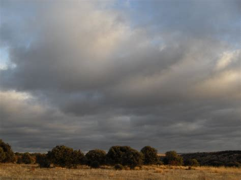 la nube nazly t 205 la otra perspectiva tipos de nubes
