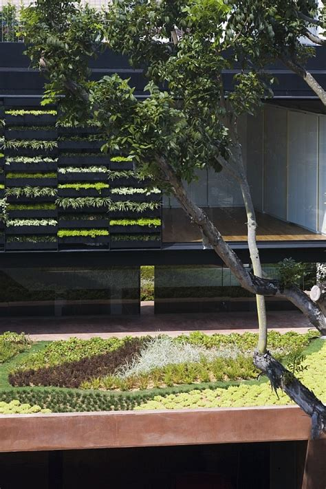 Modern Vertical Garden Contemporary Home In Singapore With Sloping Rooftops And