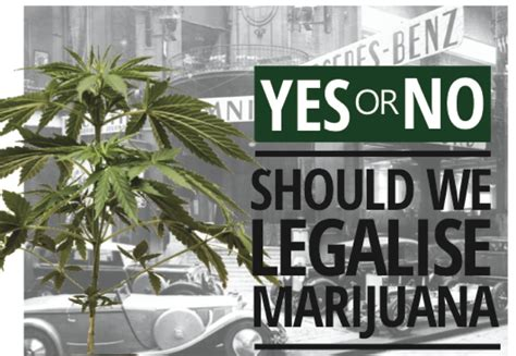 legalization of marijuana pros and cons essay 7 steps to writing