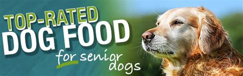 best senior food what is the best food for senior dogs