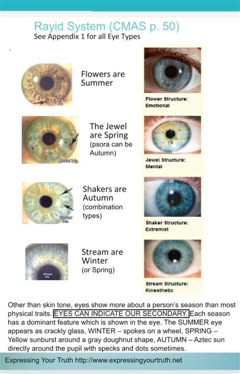 eye pattern color season celebrity eye patterns updated expressing your truth blog