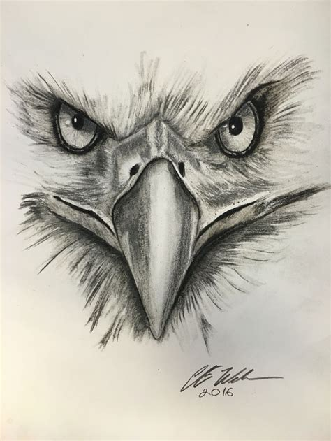 tattoo eagle drawing the 25 best eagle drawing ideas on pinterest eagle