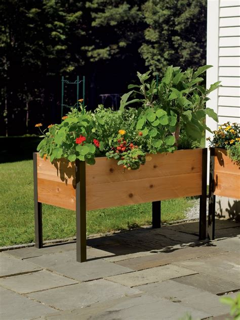 elevated cedar planter box how to build a raised bed backyard food growing