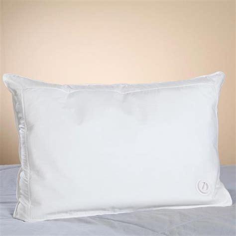 water pillow bed pillows water filled pillow walter