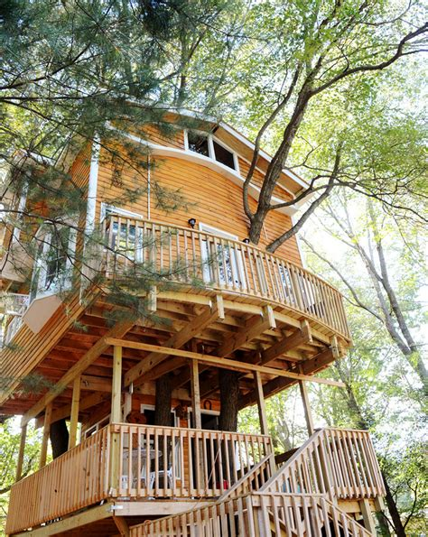 this man built an amazing 3 story treehouse for his