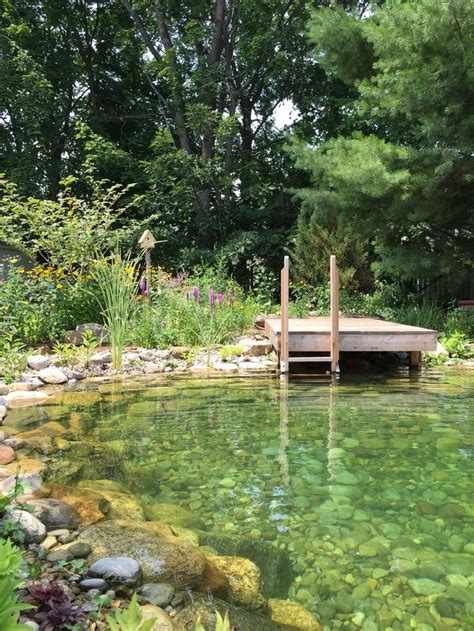 Ponds Scrub 507 best swimming pool and pond images on