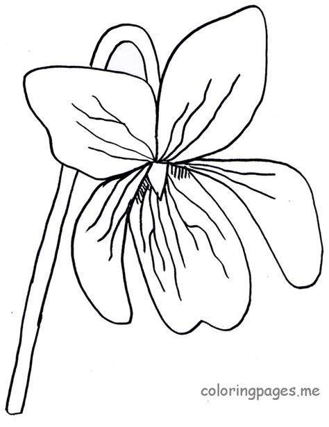 purple violet flower coloring page coloring pages of purple flowers states flower coloring