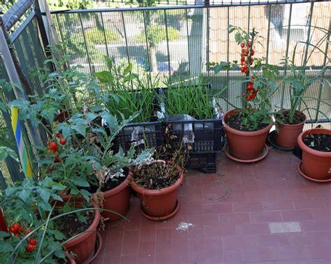 giardino sul balcone coltivare l orto orto sul balcone come coltivare l