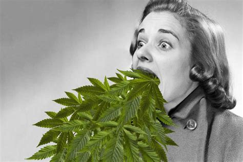 Cannabanoid Detox by All You Need To About A Marijuana Detox