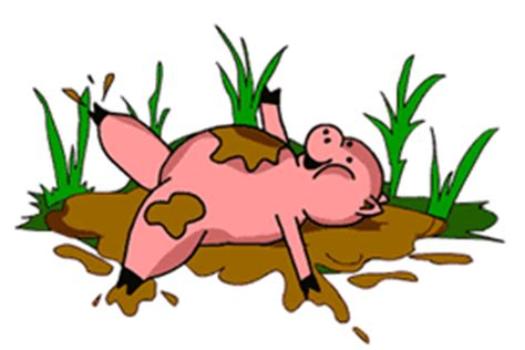 imagenes de animales animados imagenes animadas de cerdos gifs animados de animales
