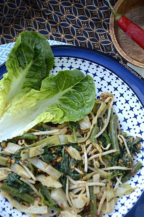 pin van shiny nulens op veganistisch eten indonesisch