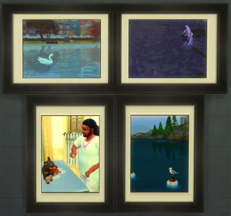 photographer collections challenge page   sims forums