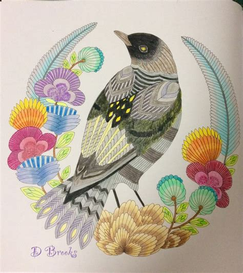 millie marottas beautiful birds 1209 best millie marota images on coloring books coloring and colored pencil