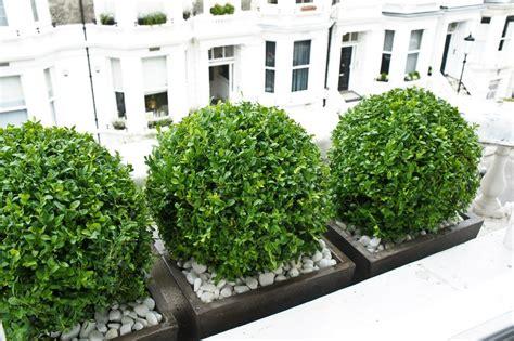 window boxes london design installation maintenance