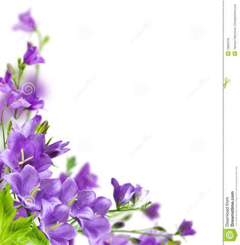 imagenes de flores libres flores azules im 225 genes de archivo libres de regal 237 as