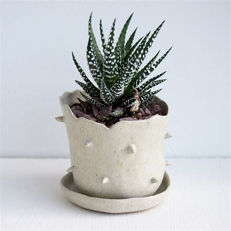 white planter pots oatmeal white spiky ceramic planter saucerhandmade by